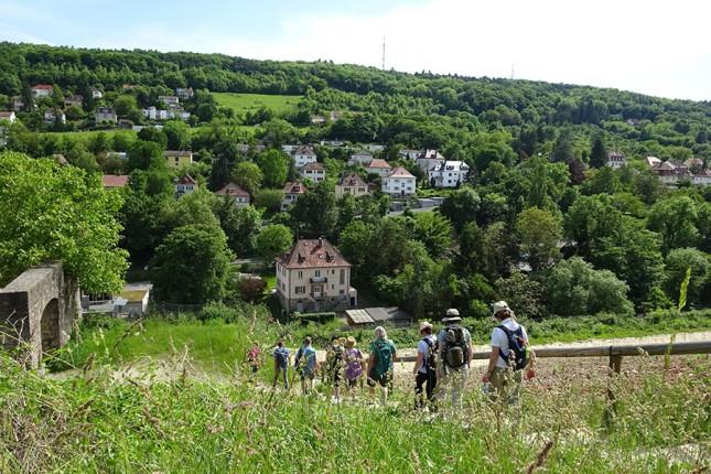 Halbtagswanderung Würzburg Geschenkgutschein