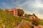 Gutscheine & Geschenke Steinburg Würzburg